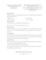 Đề thi học kì 1 môn Hóa 11D2 cơ bản trường Chu Văn An pdf