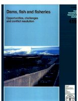 dams fish and fisheries docx