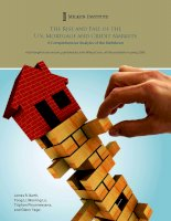 The Rise and Fall of the U.S. Mortgage and Credit Markets: A Comprehensive Analysis of the Meltdown pot