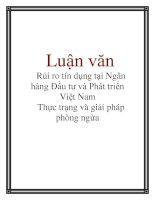 Luận văn: Rủi ro tín dụng tại Ngân hàng Đầu tư và Phát triển Việt Nam Thực trạng và giải pháp phòng ngừa ppt
