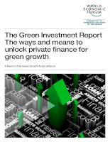 The Green Investment Report The ways and means to unlock private finance for green growth pot
