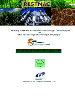 """""""Creating Markets for Renewable Energy Technologies EU RES Technology Marketing Campaign"""" docx"""