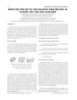 NGHIÊN CỨU TỔNG HỢP VẬT LIỆU MAO QUẢN TRUNG BÌNH MCM-48 TỪ NGUỒN THỦY TINH LỎNG TRONG NƯỚC pot