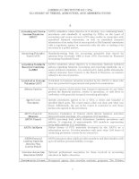 AMERICAN INSTITUTE OF CPAs GLOSSARY OF TERMS, ACRONYMS, AND ABBREVIATIONS docx