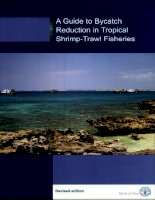 a guide to bycatch reduction in tropical shrimp trawl fisheries potx