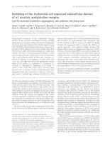Báo cáo Y học: Refolding of the Escherichia coli expressed extracellular domain of a7 nicotinic acetylcholine receptor Cys116 mutation diminishes aggregation and stabilizes the b structure pdf