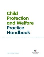 Child Protection and Welfare Practice Handbook pptx