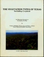 The vegetation types of Texas, including cropland ppt