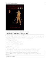 The Bright Face of Danger pdf