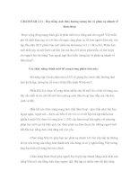 GRAMMAR 2.11 - Học tiếng Anh theo hướng tương tác và phản xạ nhanh về đàm thoại doc