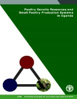 Poultry Genetic Resources and Small Poultry Production Systems in Uganda potx