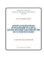 Luận văn: Giải Pháp Quản Trị Rủi Ro Tín Dụng Đối Với Doanh Nghiệp Vừa Và Nhỏ tại Ngân Hàng Nông Nghiệp và Phát Triển Nông Thôn KV Tp Hồ Chí Minh pot