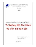 Tiểu luận : Tư tưởng Hồ Chí Minh về vấn đề dân tôc pot