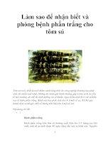Làm sao để nhận biết và phòng bệnh phấn trắng cho tôm sú pdf