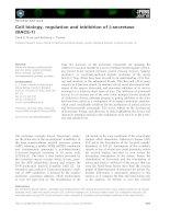Báo cáo khoa học: Cell biology, regulation and inhibition of b-secretase (BACE-1) potx