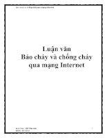 Luận văn Báo cháy và chống cháy qua mạng Internet doc
