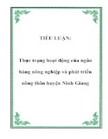 TIỂU LUẬN: Thực trạng hoạt động của ngân hàng nông nghiệp và phát triển nông thôn huyện Ninh Giang ppt