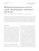 Mechanical preparation of root canals: shaping goals, techniques and means potx