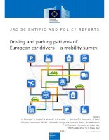 Driving and parking patterns of European car drivers --- a mobility survey pptx