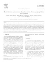 hydrothermal synthesis and characterization of some polycrystalline iron oxides