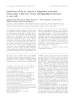 Báo cáo khoa học: Involvement of the V2 receptor in vasopressin-stimulated translocation of placental leucine aminopeptidase/oxytocinase in renal cells pdf
