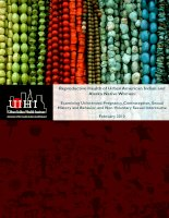 Reproductive Health of Urban American Indian and Alaska Native Women: Examining Unintended Pregnancy, Contraception, Sexual History and Behavior, and Non-Voluntary Sexual Intercourse ppt