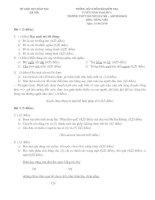 ĐỀ THI VÀO LỚP 6 MÔN TIẾNG VIỆT TRƯỜNG CHUYÊN HÀ NỘI - AMSTERDAM ( KHÓA 2010 ) pdf