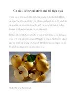 Củ cải + lê: trị ho đờm cho bé hiệu quả pdf