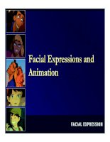 Facial Expressions and Animation ppt