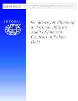 Guidance for Planning and Conducting an Audit of Internal Controls of Public Debt docx