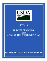 FY 2013 BUDGET SUMMARY AND ANNUAL PERFORMANCE PLAN pdf