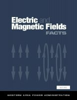 Electric and Magnetic Fields FACTS pot
