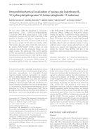 Báo cáo Y học: Immunohistochemical localization of guinea-pig leukotriene B4 12-hydroxydehydrogenase/15-ketoprostaglandin 13-reductase pdf