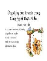 Ứng dụng của Protein trong Công Nghệ Thực Phẩm doc
