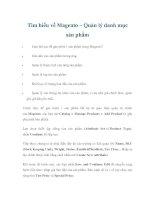 Tìm hiểu về Magento – Quản lý danh mục sản phẩm potx