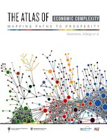 THE ATLAS OF ECONOMIC COMPLEXITY MAPPING PATHS TO PROSPERITY doc