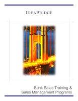 Bank Sales Training & Sales Management Programs potx