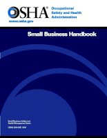 Small Business Handbook - Small Business Safety and Health Management Series pdf