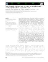Báo cáo khoa học: Analyzing the catalytic role of Asp97 in the methionine aminopeptidase from Escherichia coli potx