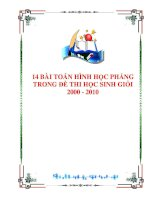 14 BÀI TOÁN HÌNH HỌC PHẲNG TRONG ĐỀ THI HSG 2000-2010 pot