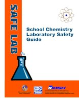 School Chemistry Laboratory Safety Guide pdf