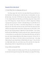 Semantic Web và thư viện số 1. World Wide Web và những hạn chế của nó pdf