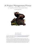 """A Project Management Primer or """"a guide on how to make projects work"""" ppt"""