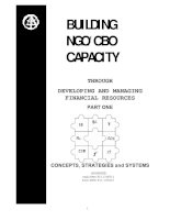 NGO capacity developing and managing financial resources