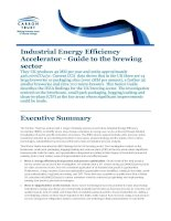 Industrial Energy Efficiency Accelerator - Guide to the brewing sector pot