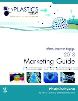 2013 Marketing Guide - The Global Community for Plastics Professionals potx