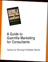 A Guide to Guerrilla Marketing for Consultants: Tactics for Winning Profitable Clients potx