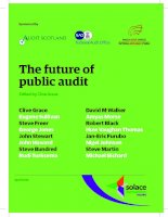 The future of public audit Edited by Clive Grace pdf