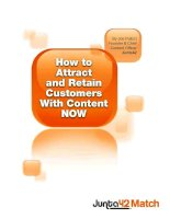 By Joe Pulizzi Founder & Chief Content Officer Junta42How to Attract and Retain Customers pdf