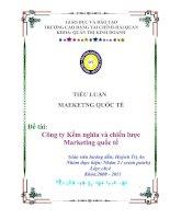 Tiểu luận:Công ty Kềm nghĩa và chiến lược Marketing quốc tế doc